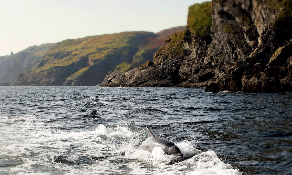 "Irlanda del Nord, Donegal. Foto di <a href=""http://www.ireland.com/it/"" target=""_blank"">Turismo Irlandese </a>"